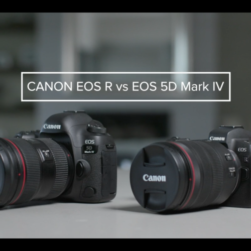 Canon mirrorless vs DSLR